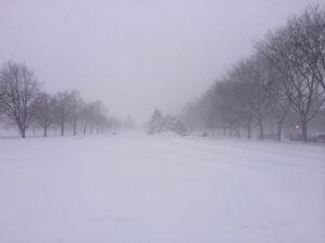 snow campus 1