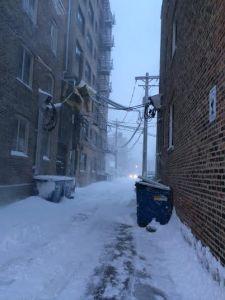 snow campus 2