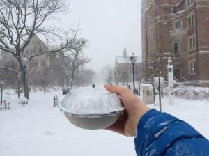 snow chipotle