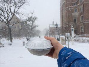 snow chipotle