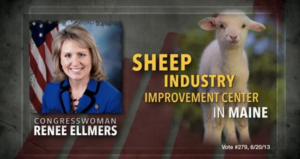 I really like this screenshot. It's very reminiscent of Carly Fiorina's Demon Sheep ad. Image via IndyWeek.