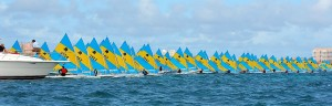 A regata of sunfish. Image via Federvela.
